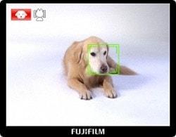 Finepix Z700 Camera