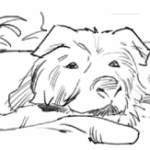 Line drawing of dog for storyboard