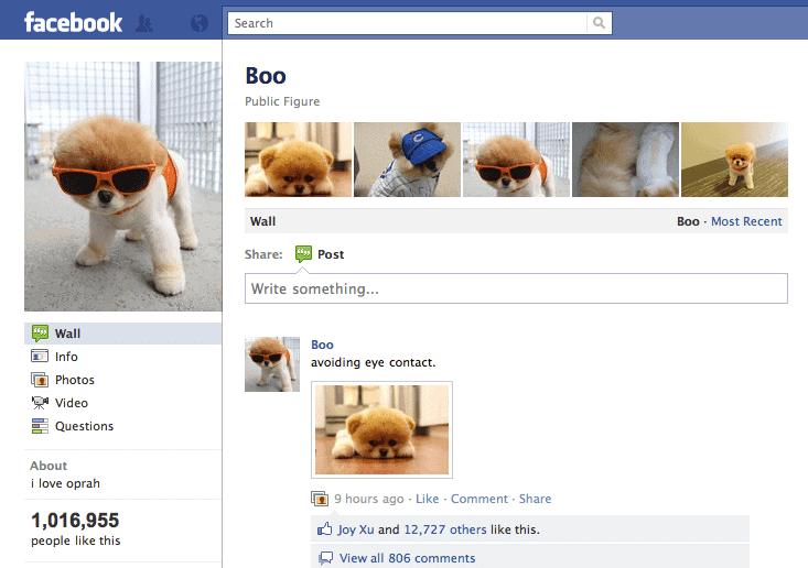 Boo's Facebook