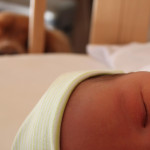 Baby in cot with dog watching