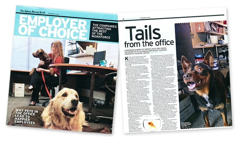 Employer of Choice Magazine - Tails from the office