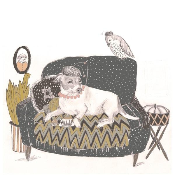 Morran illustration