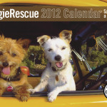 doggie rescue calendar