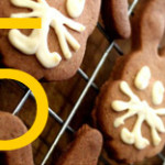 Bunny dog biscuits