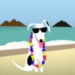 Cartoon dog on beach