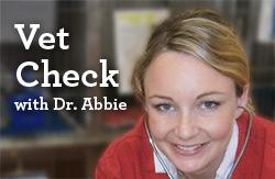 Dr Abbie Vet Check