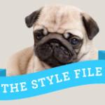 Style File Pug Feature
