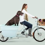 madsen-cycles-girl-dog2