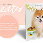 52 WEEKS OF TREATS Banner_feature