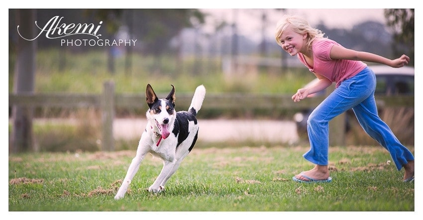 on-location-pet-photography-mornington-peninsula