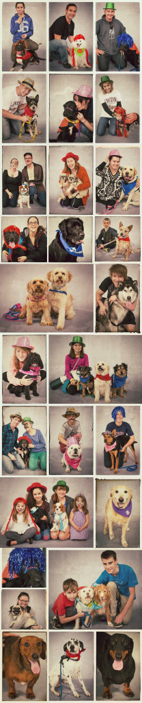 world-records-dogs-photobooth-at-melbourne-showgrounds