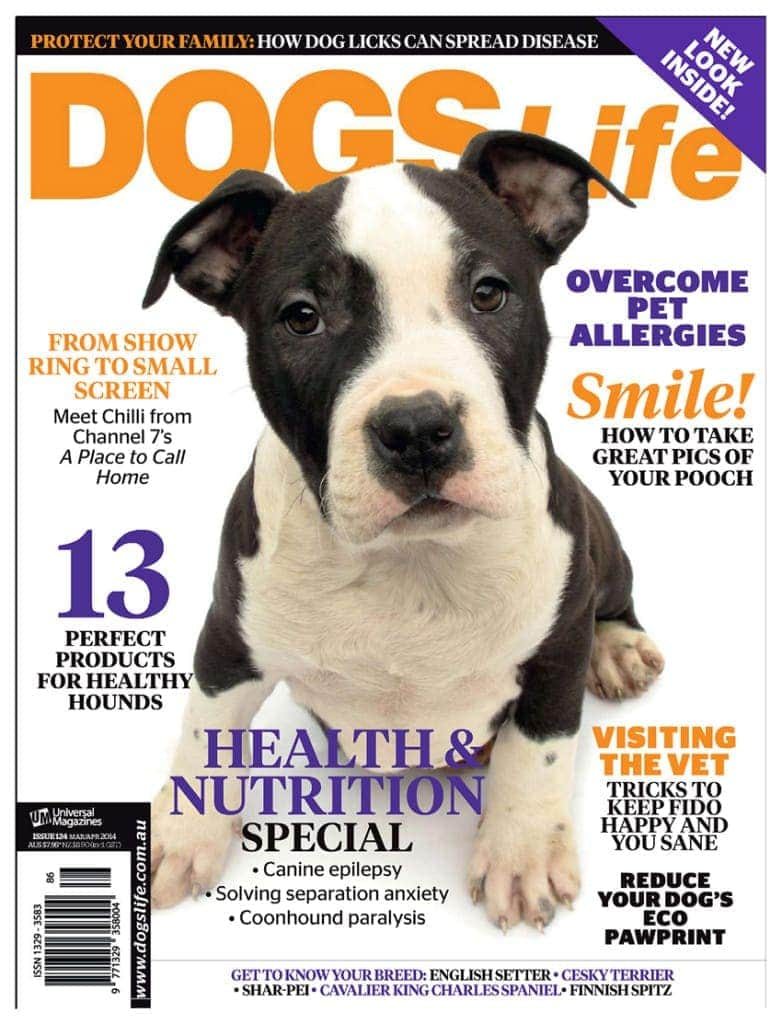 cover_of_dogs_life_magazine