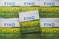 momo_book_feature