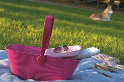pink_picnic_feature
