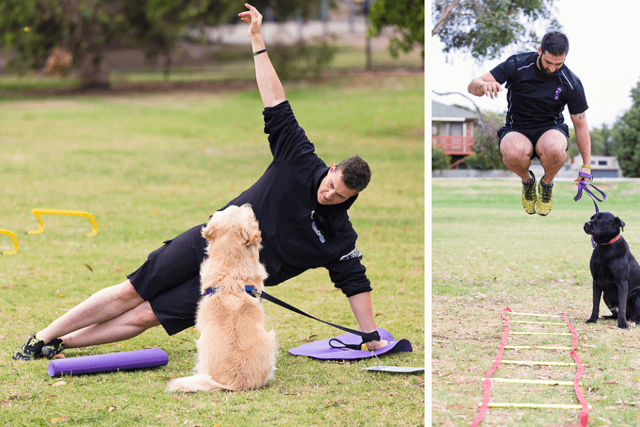 Barx Active - Exercise with your dog