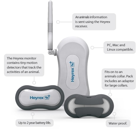 Heyrex devices