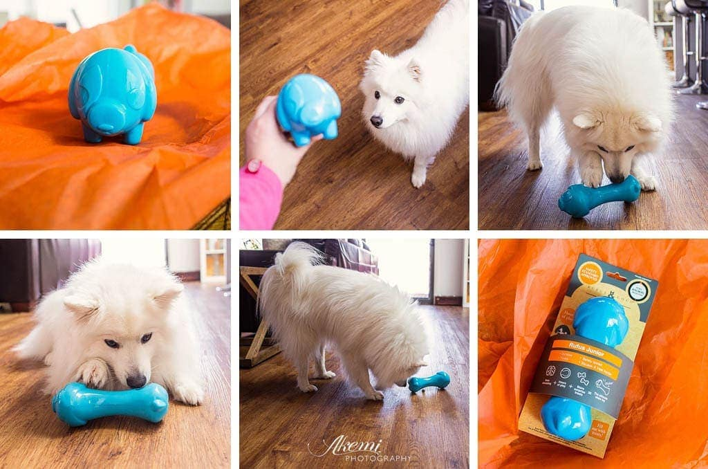 Keiko testing out the Rufus & Coco Junior Rufus Toy
