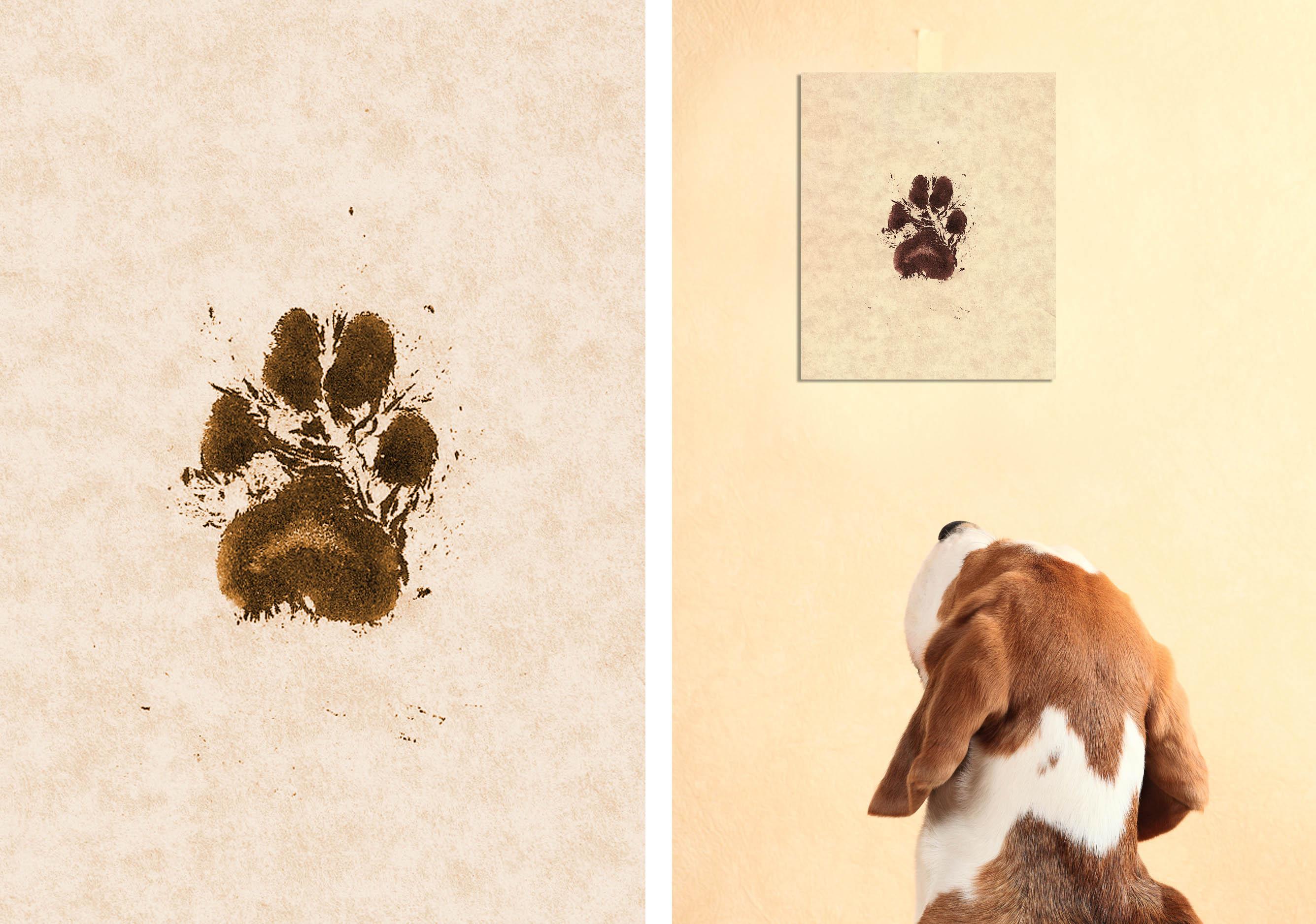 dog-pawprint-art-on-the-wall