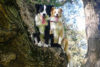 Puppy-tales-holly&ace-feature-image-1