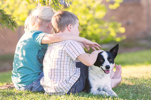 February 20th is 'Love Your Pet Day'. How will you mark the day?