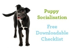 Puppy Socialisation Checklist Preview