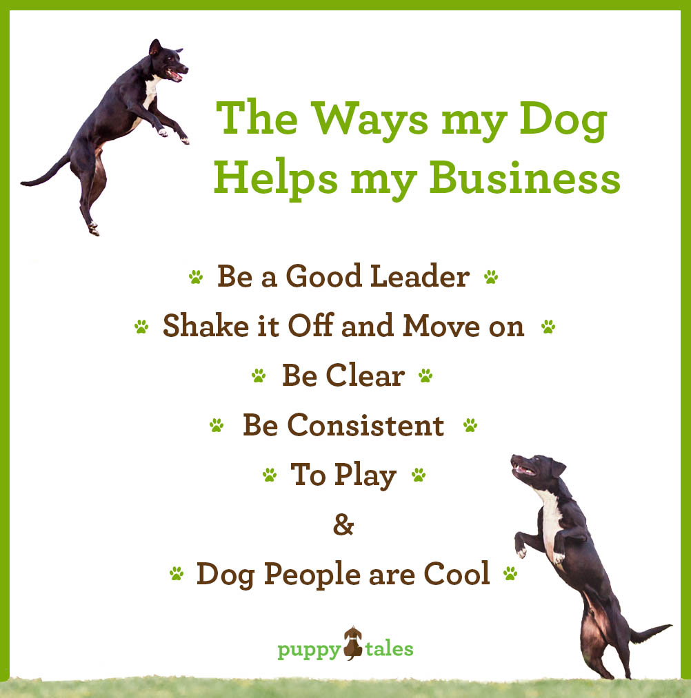 The ways my dog helps my business