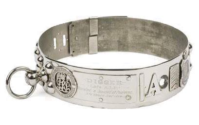 Bulldog Diggers honorary silver collar