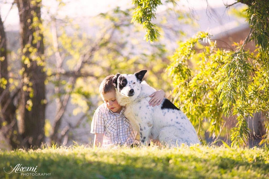 Dogs & Kids - Building this environment and nurturing a great relationship starts even before your new puppy arrives.