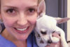 puppy-tales-love-being-a-vet-1-feature