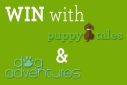 Puppy Tales Contest