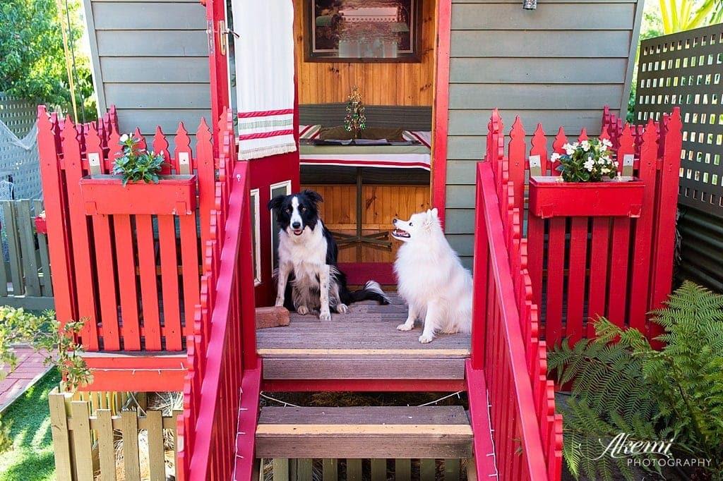 Dog Friendly Accommodation ~ Echuca Gardens