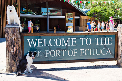 Dog Friendly Destinations ~ Echuca