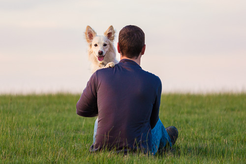 Dog-Loving Dads: 5 Paws-ome Ideas for a Fur-bulous Father's Day