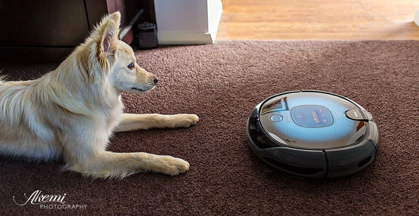 Robot Vacuum Cleaner is one of the essentials for maintaining a tidy home with dogs