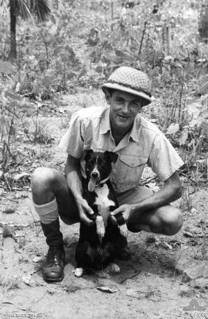 World War Two Dog: Gunner