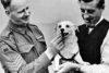World War II Dogs