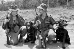 Tracker Dogs- A Profile of War Heroes Feature