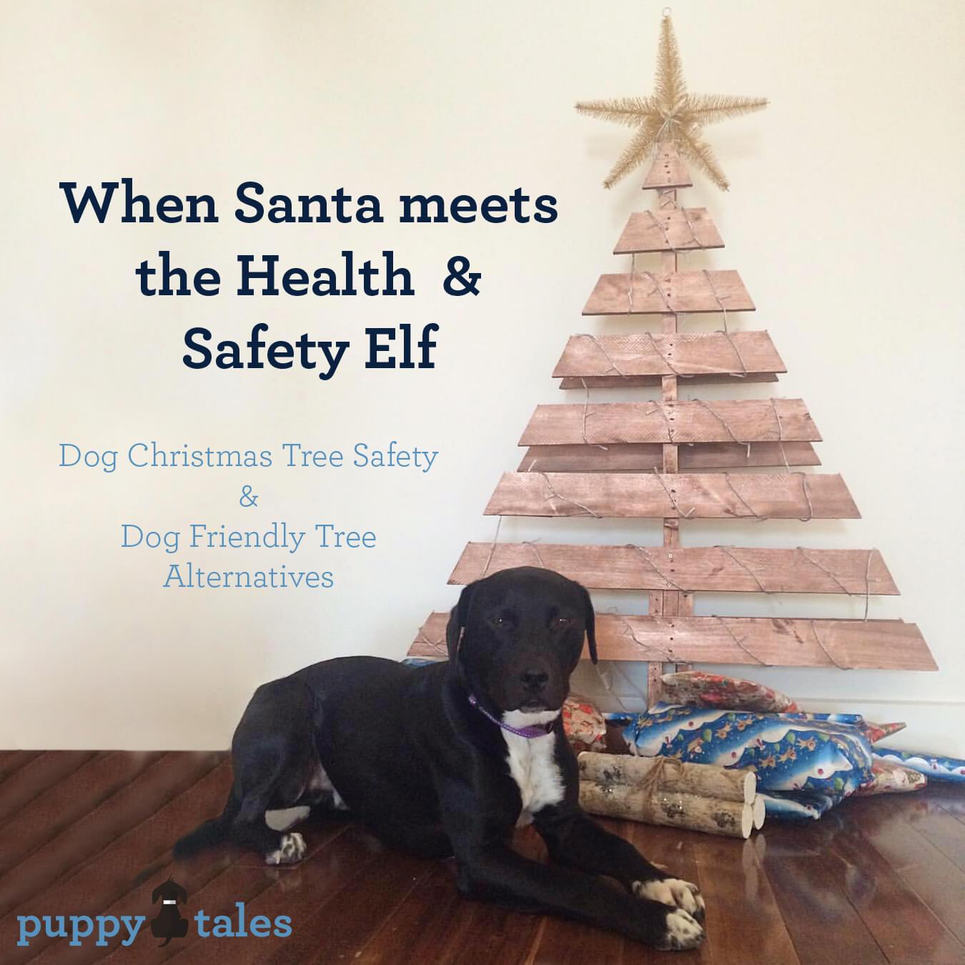 Dog Christmas Tree Safety & Alternatives