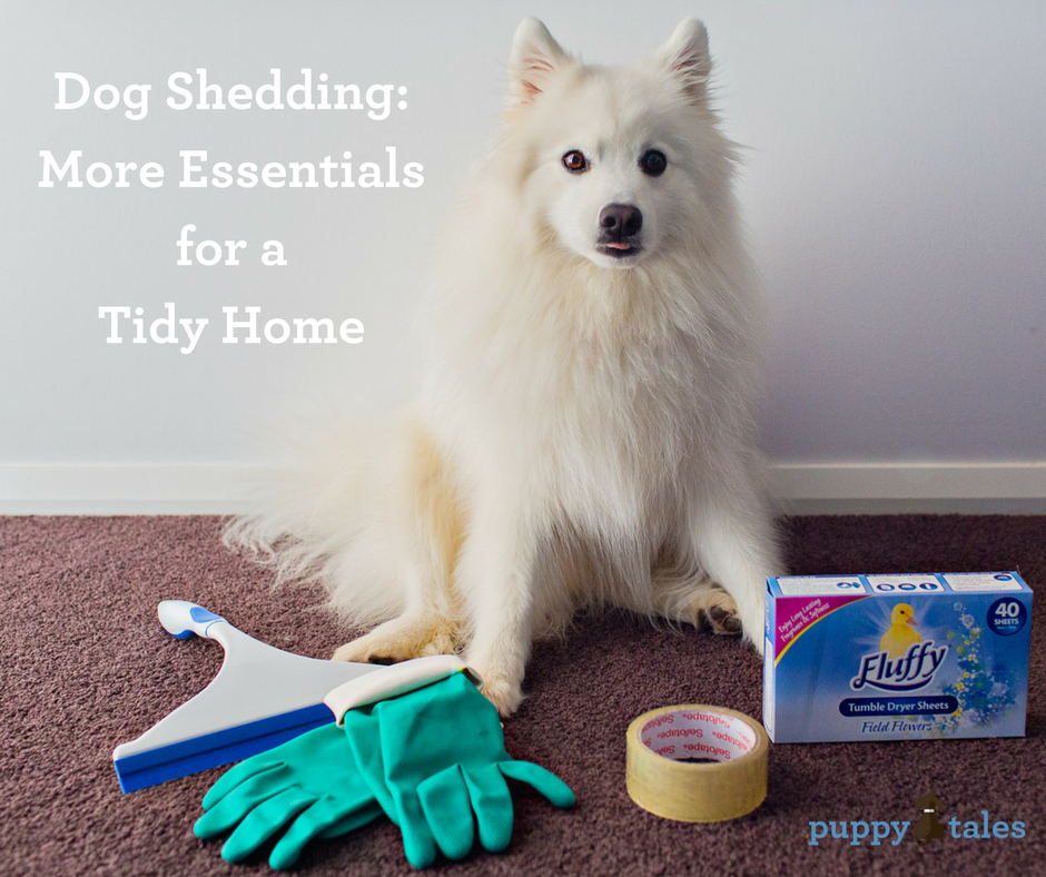 Dog Shedding: More Essentials for a Tidy Home