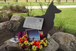 explosive-detection-dogs-memorial