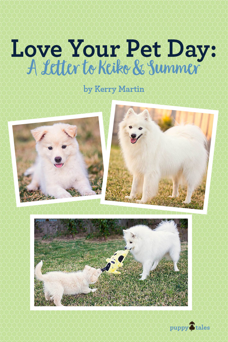 Love Your Pet Day- A Letter to Keiko & Summer