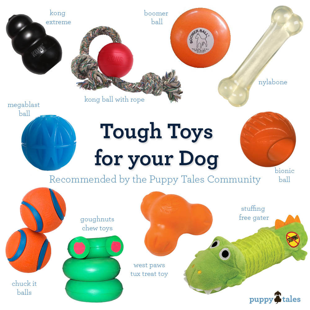 The Best Tough Toys for your Dog
