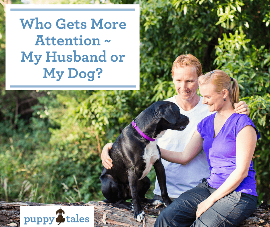 Who Gets More Attention – My Husband or My Dog?