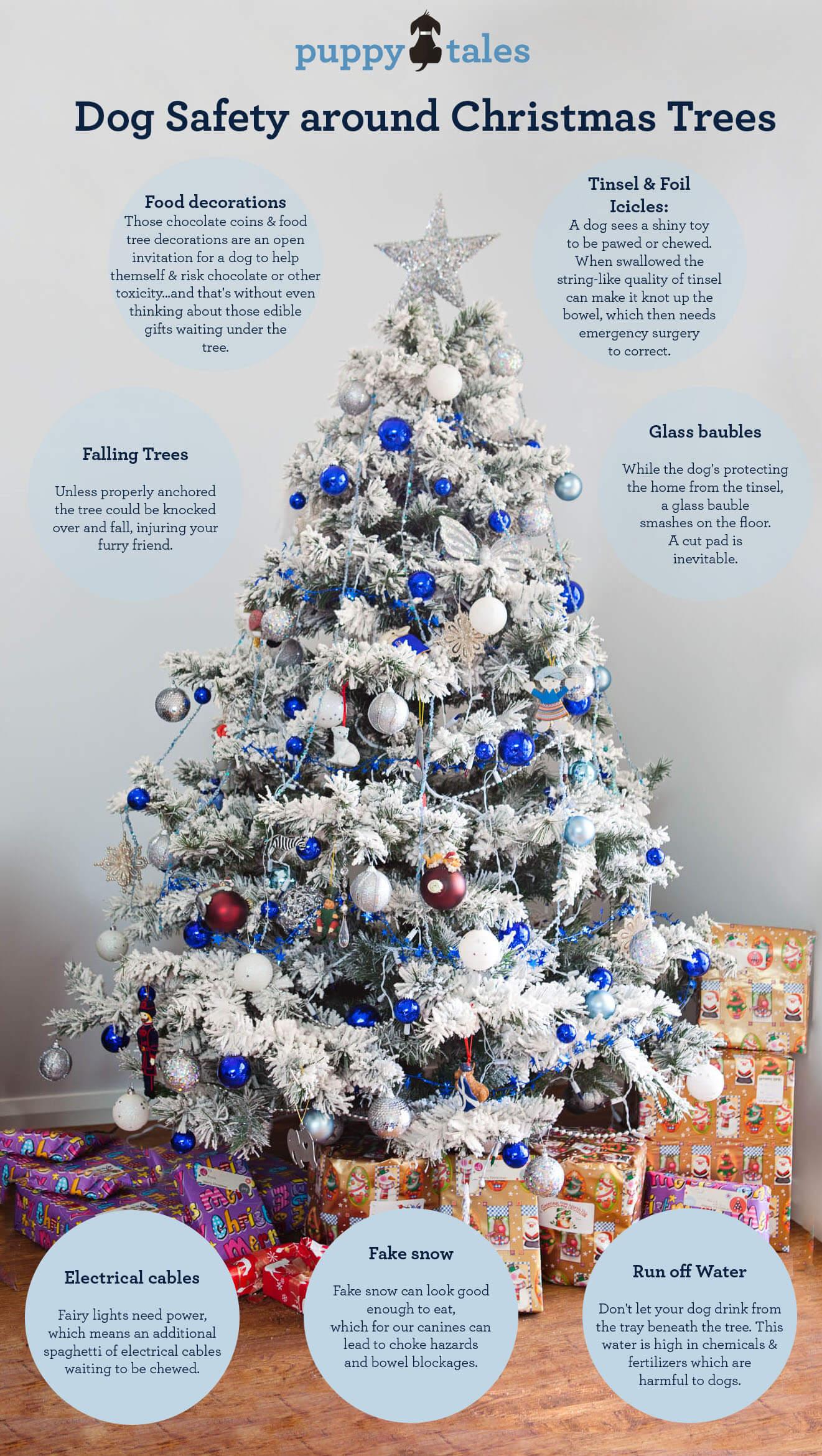 Dog Safety around Christmas Trees