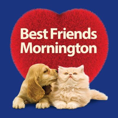 Huge Thankyou to Best Friends Mornington from Tales of Fluff