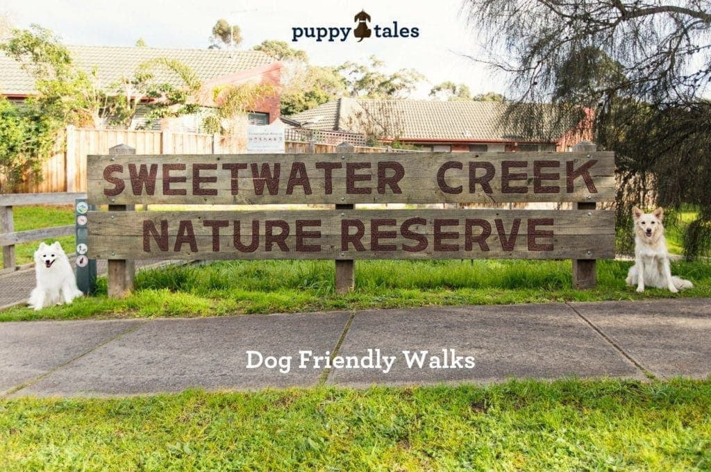 Sweetwater Creek Nature Reserve Dog Friendly Walks