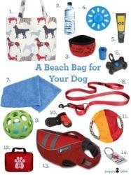 A beach bag for your dog.