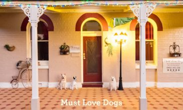 Dog Friendly Accomodation In Bermagui