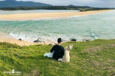 Bermagui Coastal Walk Dog Friendly Hike