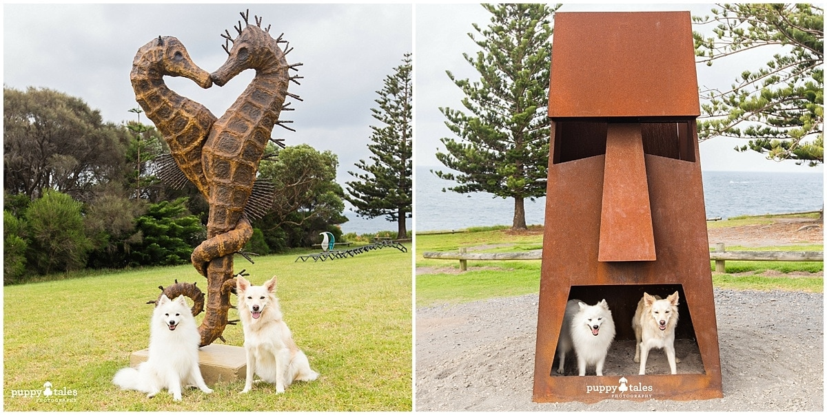 Bermagui Sculpture in the park